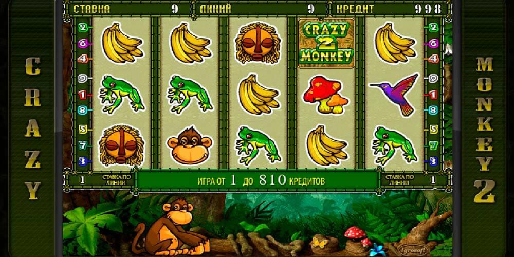 crazy monkey играть